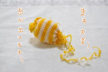DSC_9880_convert_20101031082649.jpg