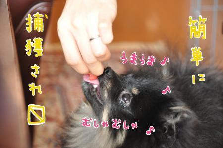 amu_convert_20100804221241.jpg