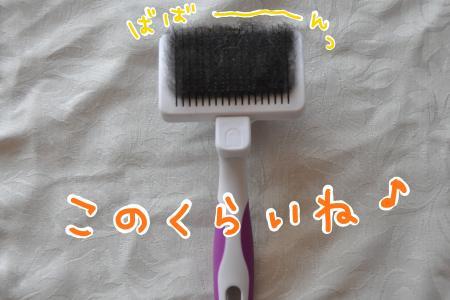 asa1_convert_20100820102505.jpg
