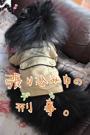 b5_convert_20101006095607.jpg