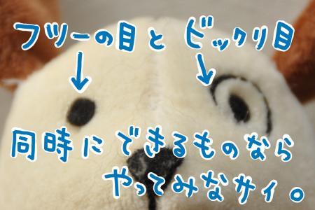 bikkuri_convert_20100726084318.jpg