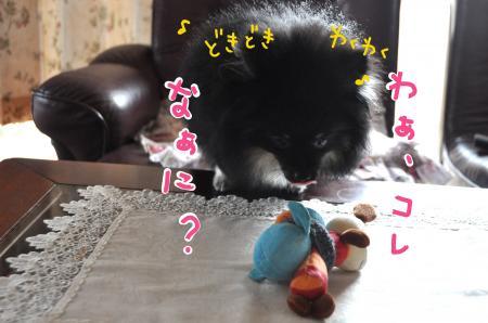 dokiwaku_convert_20100803153628.jpg