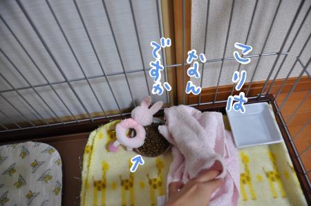 food2_convert_20100421083704.jpg