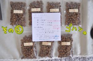 food_convert_20100525175446.jpg