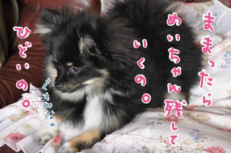 gusun_convert_20100525180201.jpg