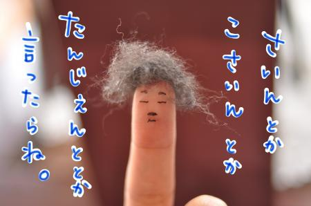hakase_convert_20100328132528.jpg