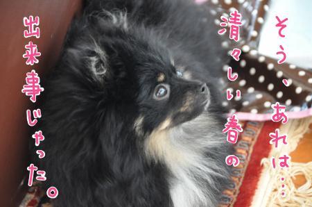 haruno_convert_20100730084525.jpg