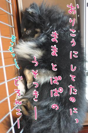 ijikemofu_convert_20100722100146.jpg