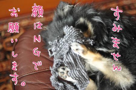 kaoha_convert_20100715193514.jpg