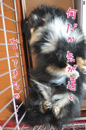 kiga_convert_20100714211308.jpg