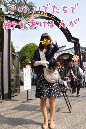 konokakko_convert_20100804230450.jpg