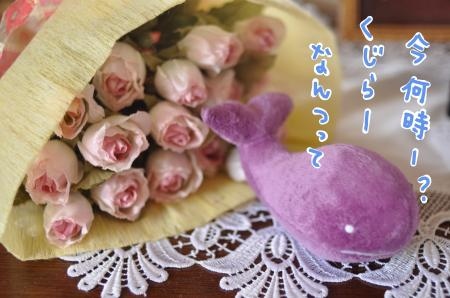 kuzira_convert_20100714211345.jpg