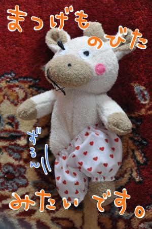 matsuge_convert_20100728191408.jpg