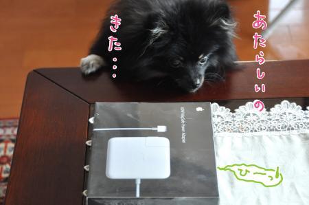 meimac_convert_20100813000607.jpg
