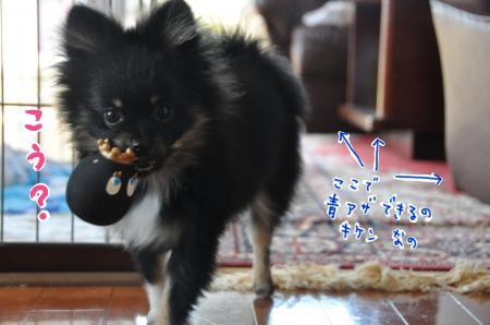 meitamago_convert_20100427094318.jpg