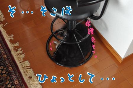 mofu2-2_convert_20100810162354.jpg