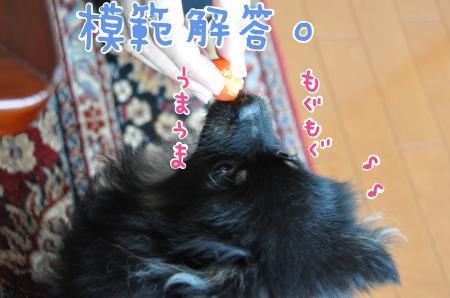 mohan_convert_20100726084244.jpg