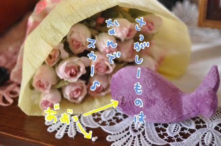 sagashi_convert_20100714211441.jpg