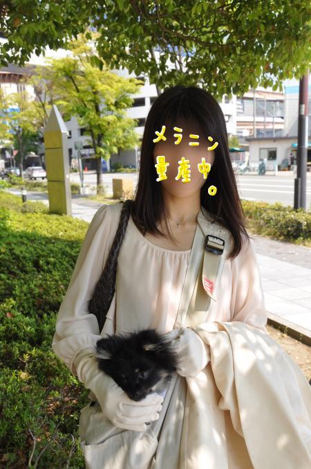 senkyo_convert_20100507095931.jpg