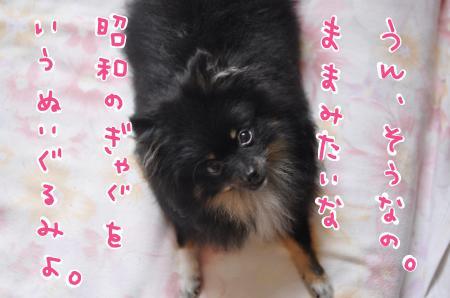 showa_convert_20100714211522.jpg