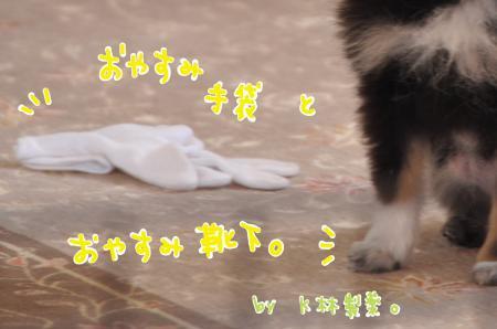 tebukurokutsusita1_convert_20100620083518.jpg