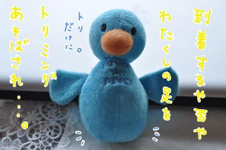 tori1_convert_20100616183205.jpg