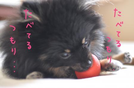 tsumori_convert_20100707065915.jpg
