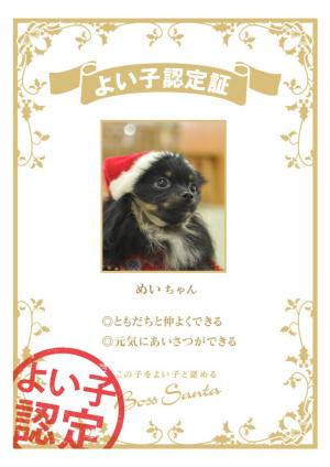 yoi-ko+nintei_convert_20101222095534.jpg