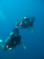 タオ島 ダイビング チュンポンピナクル9月2日