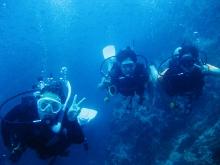 タオ島 ダイビング 水中 ダイバー