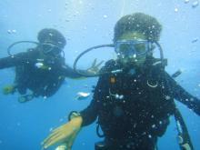 タオ島ダイビング チュンポン潜降①