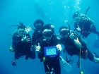 タオ島 ダイビング 100本記念