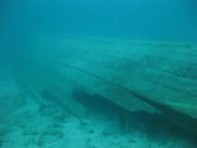 タオ島 水中 ロングテール