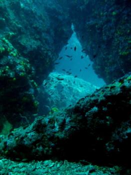 タオ島 グリーンロック スイムスルー