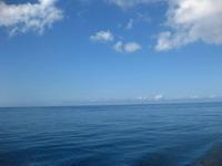 タオ島ダイビング セイルロックツアー