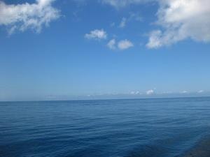 タオ島 ダイビング 水面