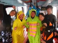 タオ島 ダイビング キグルミダイブ