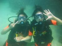 タオ島ダイビング マンゴーベイ 体験ダイビング