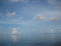 タオ島 ダイビング 水面 凪