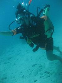 タオ島 ダイビング OW講習