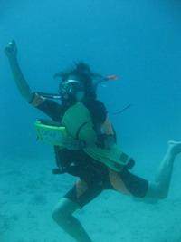 タオ島 ダイビング 水中遊び