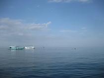 タオ島 海 水面