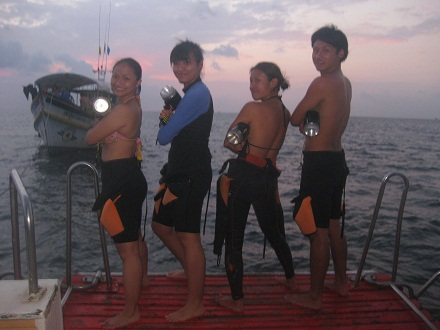 タオ島 ダイビング ナイトダイビング