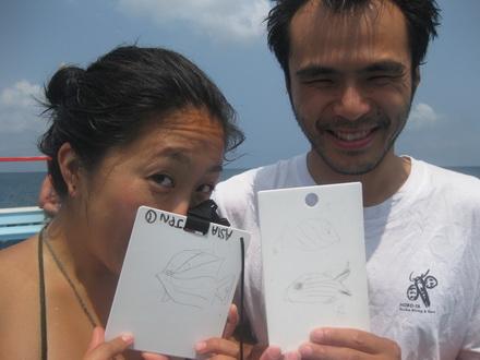 タオ島 ダイビング 講習