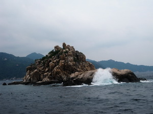 タオ島 ダイビング シャークアイランド