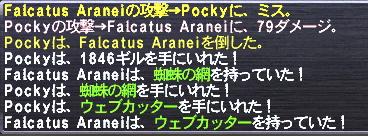 Falcatus Aranei 戦利品