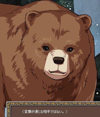 詳しい…クマ??w