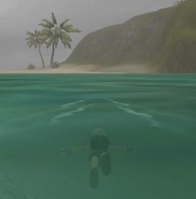 今日も泳いで…