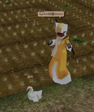 雷雨と鶏さんと