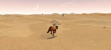 砂漠を縦断!
